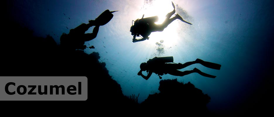 diving cozumel with deep deep down
