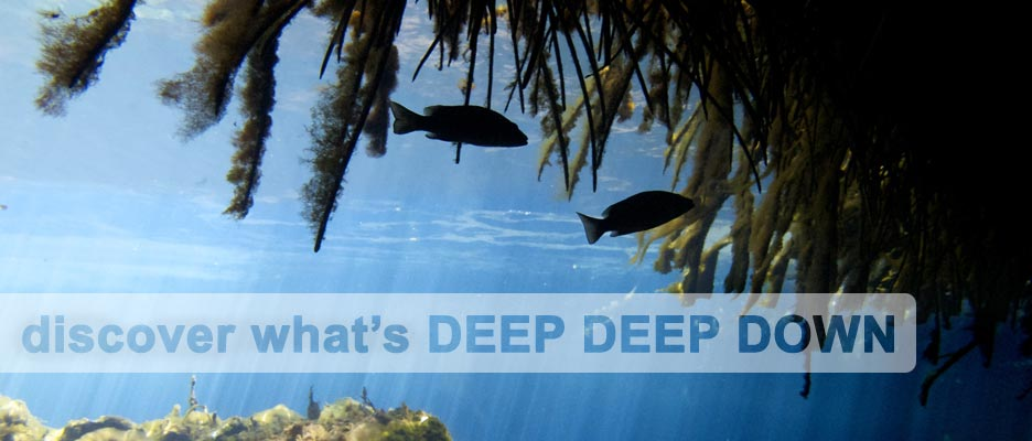 diving with deep deep down